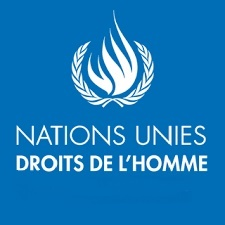 Nations Unies - Droits de l'Homme